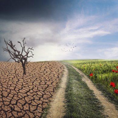 La UJA aborda el impacto generado por el calentamiento en el ámbito medioambiental y de la salud