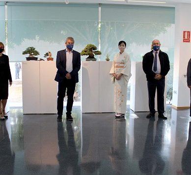Viaje a Oriente con la I Semana de la Cultura Japonesa de la UAL