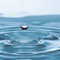 Una profesora de la URJC propone nuevos indicadores para el análisis de aguas residuales