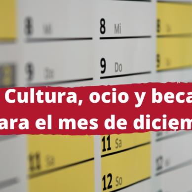 Cultura, formación y talleres para seguir en diciembre