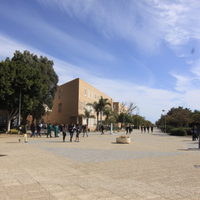 La UAL oferta 25 plazas de investigación para jóvenes titulados