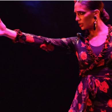 La UNIA oferta en modalidad virtual un título de Experto en Baile Flamenco