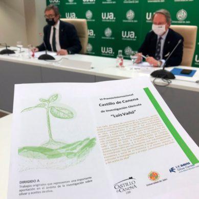 Presentan una nueva edición del Premio Castillo de Canena para fomentar la investigación oleícola