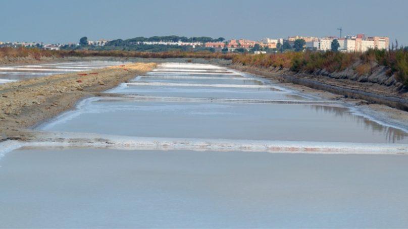La UCA promueve ayudas económicas para impulsar la sostenibilidad de las salinas