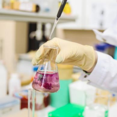 La Crue Universidades Españolas se posiciona contra las pseudoterapias