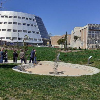 La Universidad de Jaén, entre las más verdes del mundo