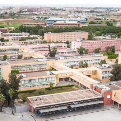 La UPO lidera las tasas de rendimiento académico en Andalucía según la Fundación CYD