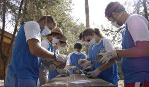 El IAJ hasta el 21 de abril abre el plazo de preinscripción para participar en el Programa de Campos de Voluntariado Juvenil 2021.