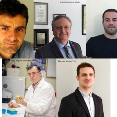 Cinco profesores de la UCA entre los mejores científicos del mundo