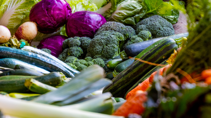 Aprende a cocinar de manera saludable junto a la UGR