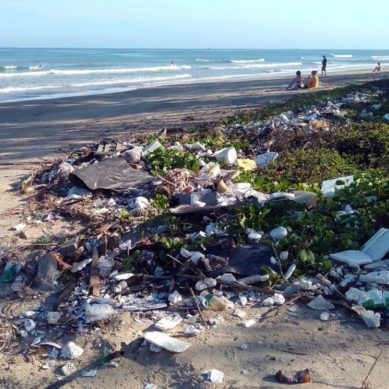 La UCA organiza un programa de actividades para luchar contra la contaminación marina