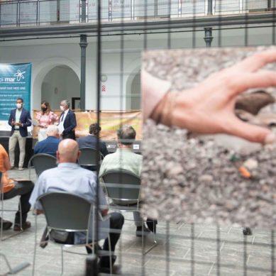 La UCA coge una exposición fotográfica sobre el 'chorlitejo patinegro'